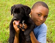 Veterinarians say with training (and teaching), the risk of a dog bite can be reduced. (©iStockphoto.com/Eileen Hart)
